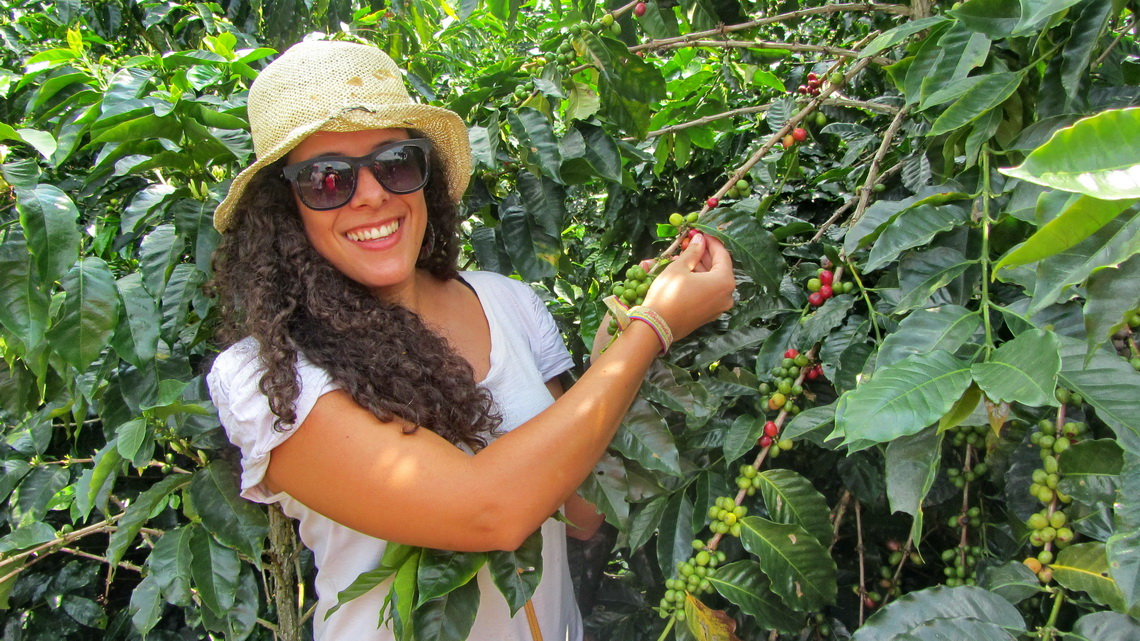 Lias with coffee plants