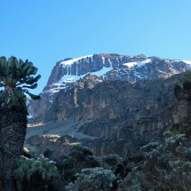 Kilimanjaro in the morning - picture close to Baranco Camp