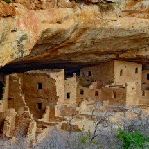 Cliff dwelling Spruce Tree House
