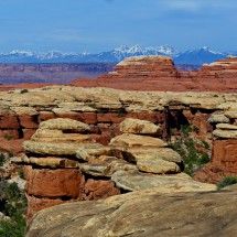 Sandstone rocks with snowy mountains of the northern section of the Manti-la Sal National Forest