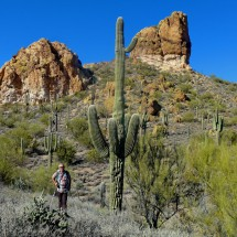 Alfred with a huge Saguaro cactus, the national symbol of Arizona