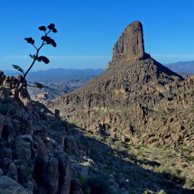 Weaver's Needle seen from the Peralta Canyon Trail