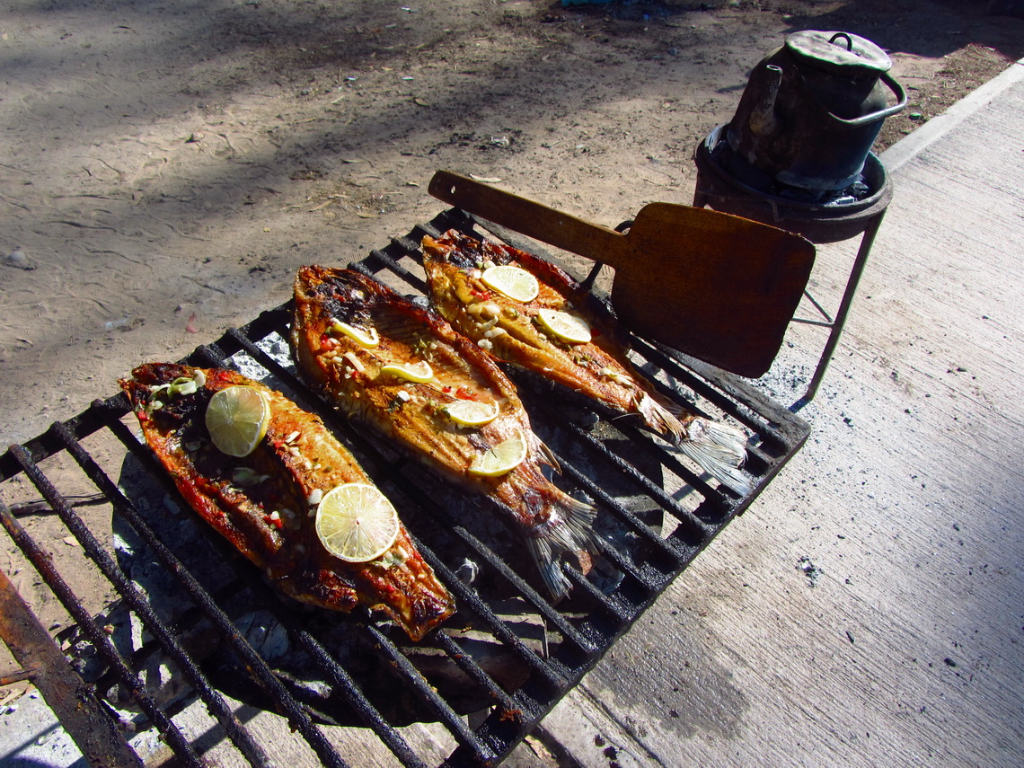 Grilled fish of Rio Honda