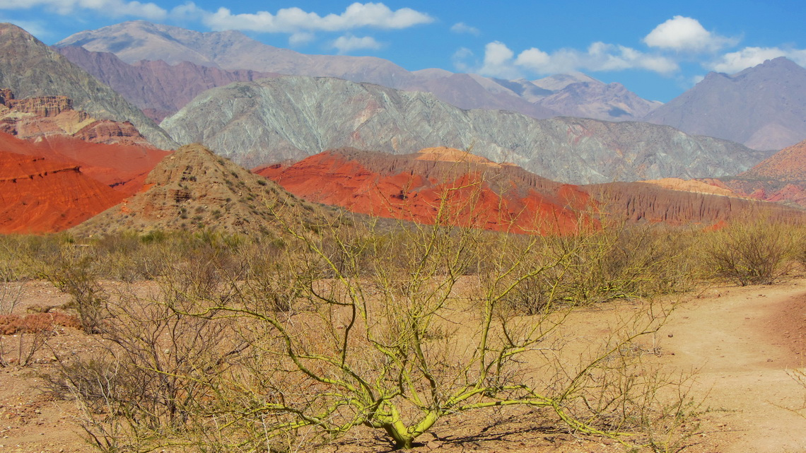 Green bush with brown, red and silver mountains