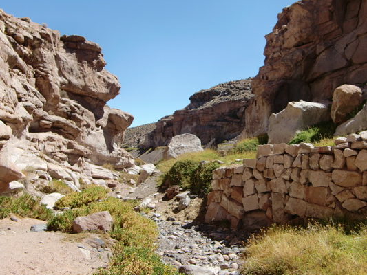 Gorge in the Atacama desert with fluent water